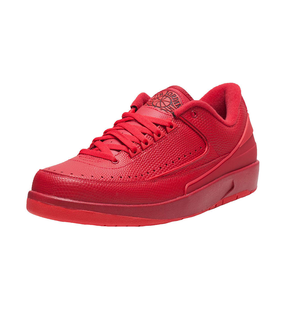 check out 7af0e 72a79 RETRO 2 LOW SNEAKER